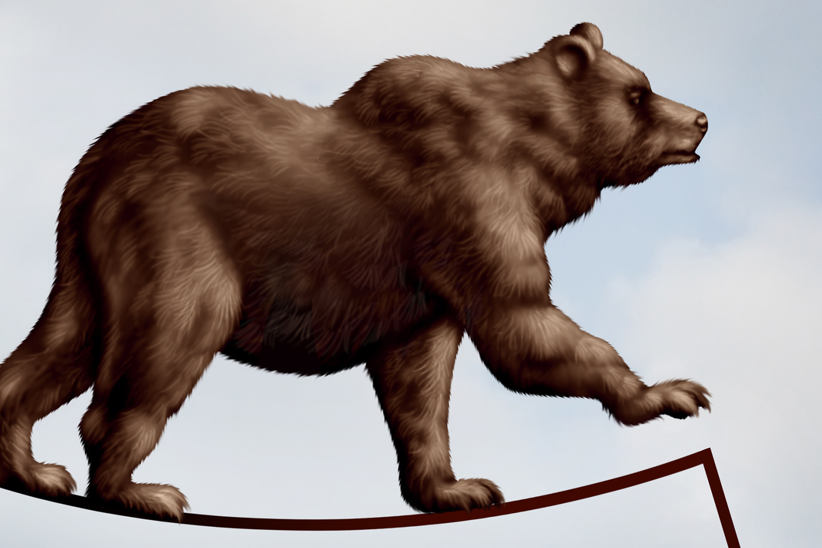 A Bear Market How long can a bear ma...
